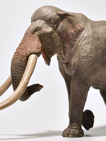 Straight-Tusked Elephant 1/35 Scale Replica