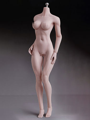 Super-Flexible 1/6 Scale Seamless Female Body 7th Generation (Pale Medium Bust)