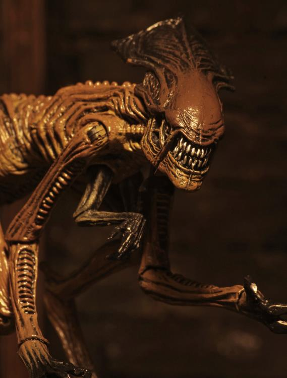 Alien 3 Creature Accessory Pack