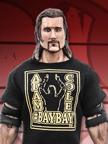 "Ring of Honor Adam Cole 6"" Action Figure"