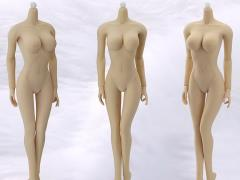 1/6 Scale Female Seamless Body (Pale & Large Bust)