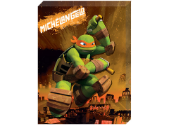 TMNT Michelangelo Canvas Art
