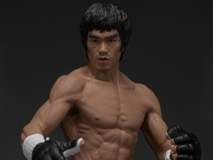 Bruce Lee The Martial Artist Series No. 2 Bruce Lee 1/12 Scale Figure