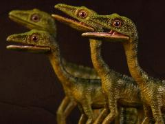 "Compsognathus longipes ""Bad Company"" Four Pack 1/6 Scale Museum Class Replicas"