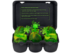 Xenomorph Egg Set in Collectible Carton - Glow in The Dark