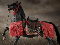 Series of Empires Japan's Warring States Rennsennasige The Steed 1/6 Scale Figure