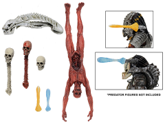 Predator Alien Deluxe Accessory Pack