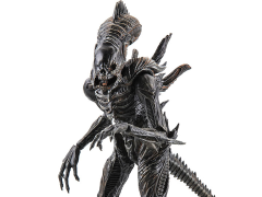 Aliens: Colonial Marines - 1:18 Scale Xenomorph Raven Scale Action Figure