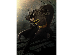 DC Forces of Good & Evil Batman Displate Metal Print
