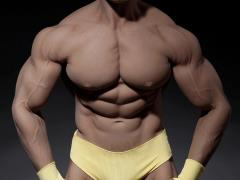 Super-Flexible 1/6 Scale Seamless Male Body 3.0