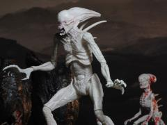 "Alien: Covenant 7"" Action Figure - Neomorph"
