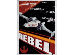 Star Wars Galactic Propaganda Rebel Displate Metal Print