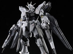 Gundam RG 1/144 Strike Freedom Gundam (Deactive Mode) Exclusive Model Kit
