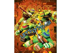 "TMNT ""Let's Do This!"" LED Canvas Art"