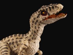 "Velociraptor ""Rose"" 1/18 Scale Replica"