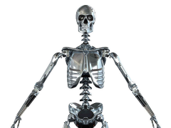 Mark I Endoskeleton 1/6 Scale Figure