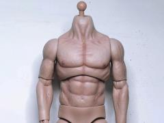 Athletik Male (Pale Skin Tone) 1/6 Scale Limited Edition Body