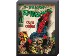 Marvel The Amazing Spider-Man Comic Cover Printed Glass Art