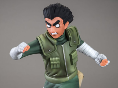 Naruto DXtra Rock Lee Statue