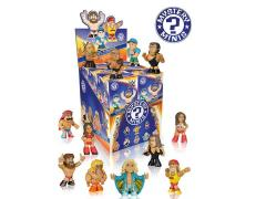 WWE Mystery Minis Box of 12 Figures