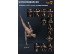 Super-Flexible 1/6 Scale Seamless Male Body