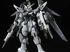 Gundam RG 1/144 Destiny Gundam (Deactive Mode) Exclusive Model Kit