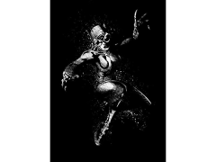 DC Dark Edition Catwoman Displate Metal Print