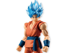 Dragon Ball Super Shodo Super Saiyan God Super Saiyan Goku