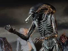 "Alien Covenant 7"" Action Figure - Xenomorph"