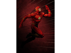 DC Forces of Good & Evil The Flash Displate Metal Print