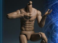 1/6 Scale Muscle Body Version 01