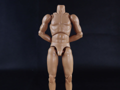 1/6 Scale Standard Male Body (Arm Muscles)