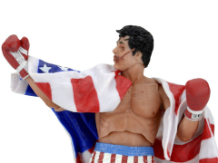 Rocky 40th Anniversary Series 02 Rocky Figure