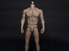1/6 Scale Durable Body - Thick Chest and Broad Shoulders