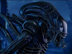 Aliens MMS354 Alien Warrior 1/6th scale Collectible Figure